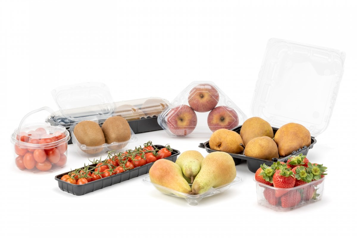 Punnets and Trays in R-PET, PET and PP
